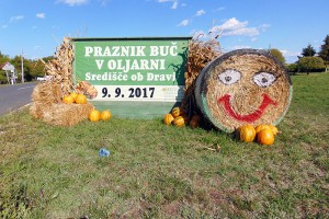 15. tradicionalna prireditev Praznik buč - dan odprtih vrat Oljarne Središče ob Dravi bo v soboto, 9.septembra 2017